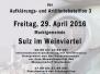 Angelobung Bundesheer 29.4.2016